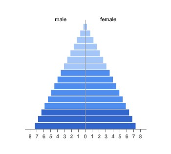 Population Pyramid - Metal, Coal Earth Resources -