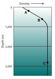 Density Coolest at depth, saltiest waters, Ocean Weather Climate, quiztutors.com